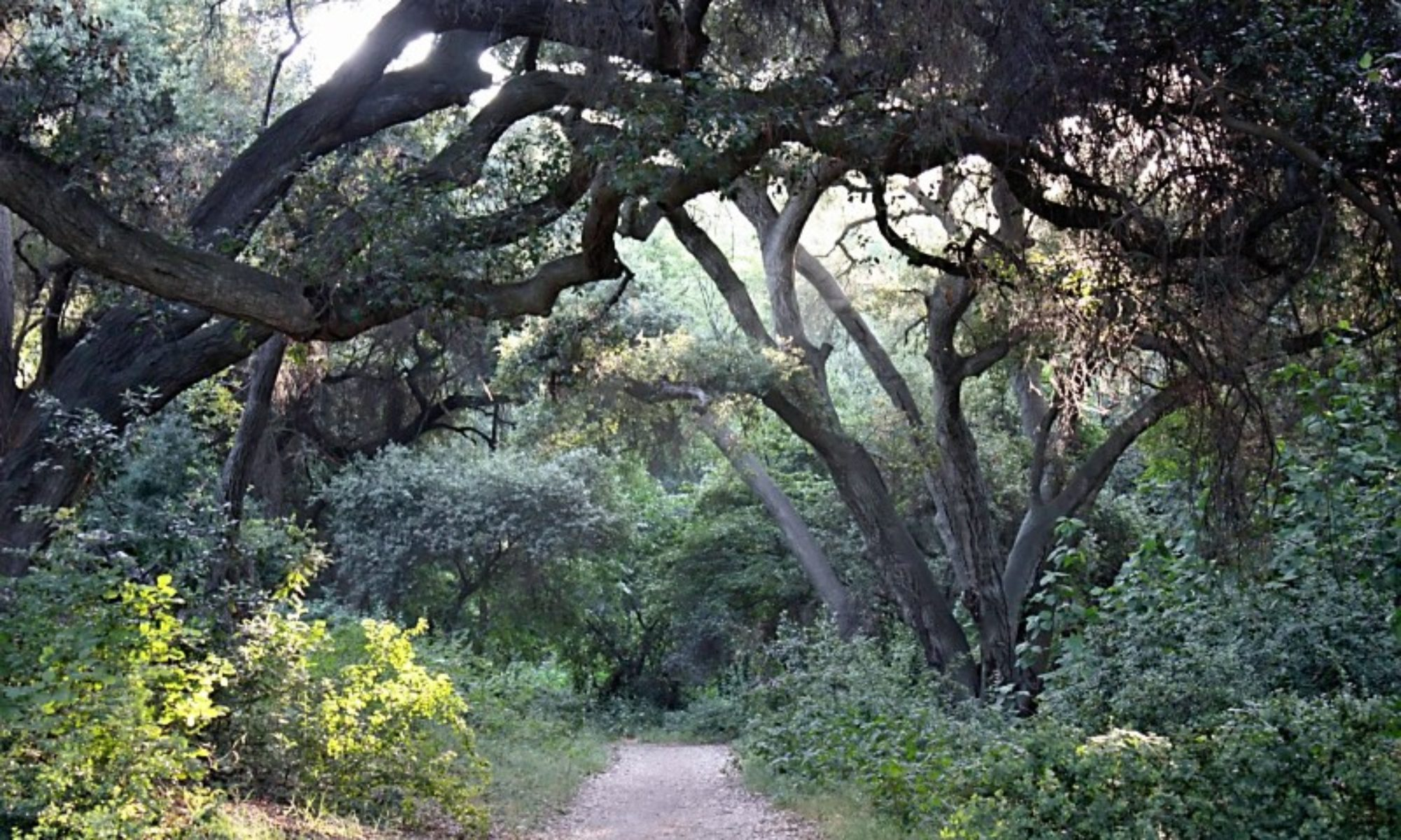The La Verne Land Conservancy